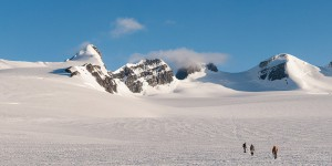 Trekking across the Lyell Icefield, Rocky Mountains, British Columbia