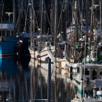 Ucluelet harbour, Vancouver Island